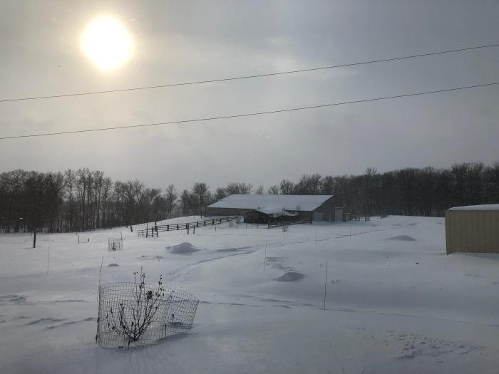 2020-01-17 Pelican Rapids